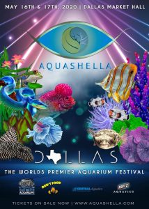 Aquashella - Dallas 2020 @ Dallas Market HAll